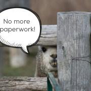 No Paper Process