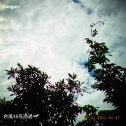 台風15号通過中、その風の影響はまだまだ熊本に残っている。