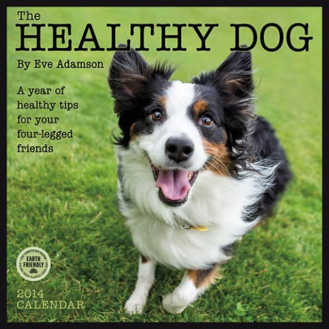 The Healthy Dog Wall Calendar