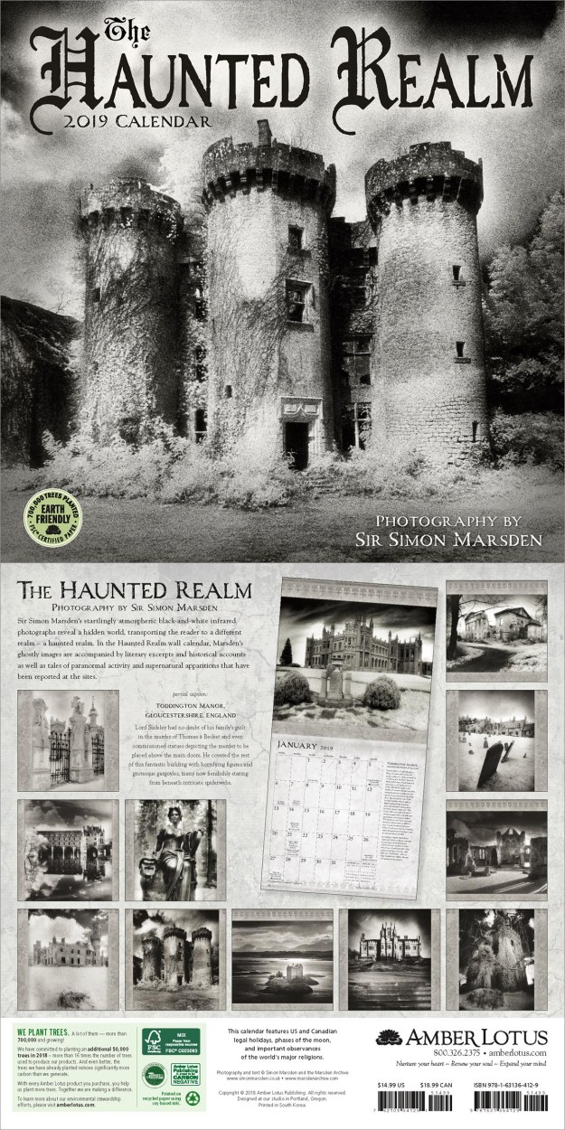 Haunted Realm 2019 wall calendar