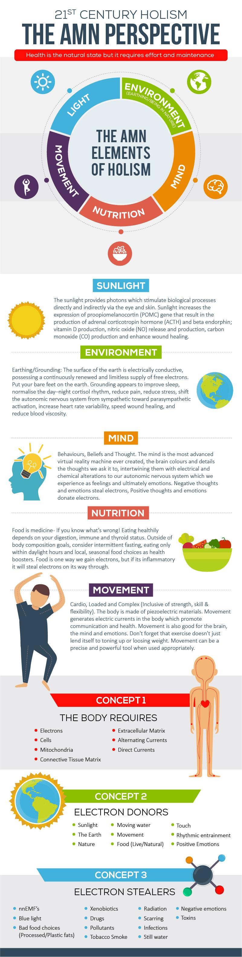 holistic health infographic amn academy