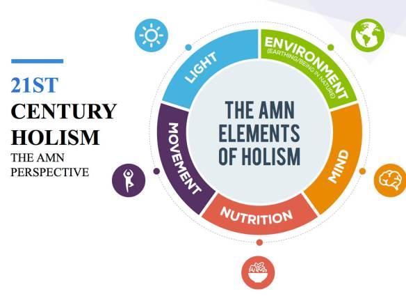 amn academy holistic