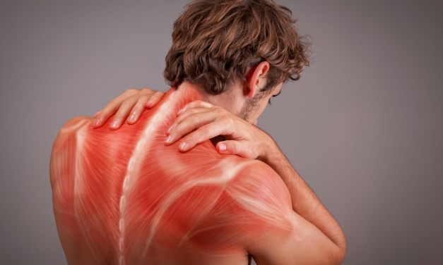 Fascia: What is it? And Why Should I Care?