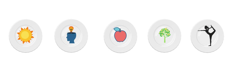 AMN holistic menu
