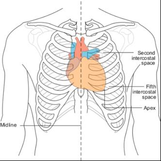 amn academy heart chest interoception blog