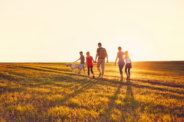 walking sunlight amn academy uv light