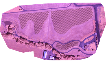 Immagine NDVI senza elaborazioni generata dalla camera MAPIR NDVI Blue + NIR