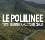 GESTIONE POLILINEE - TOPOGRAFIA