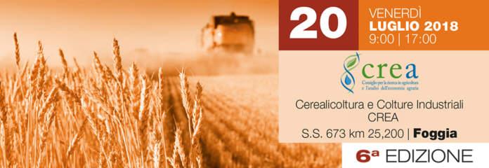 nova_agricoltura_campo_2018_2-696x240