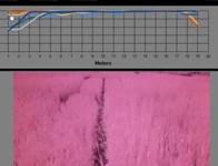 NDVI - agricoltura di precisione