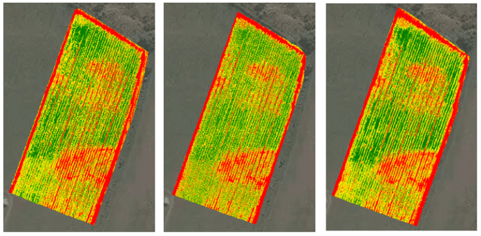Mappe NDVI_Multispectral
