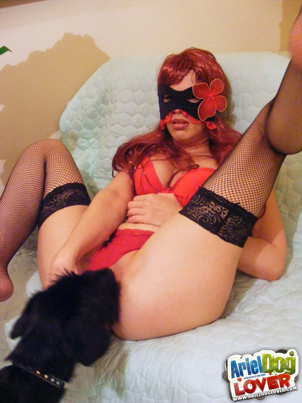 Mysterious babe's zoo sex play