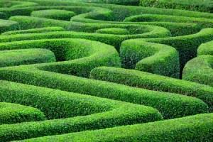 Garten des Lebens, Ausweg, Achtsamkeit