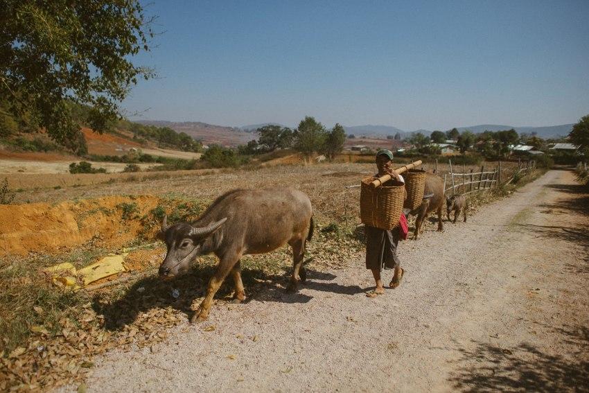 0034 inle lake trekking d76 5740 - Trekking von Kalaw zum Inle-See - Myanmar / Burma