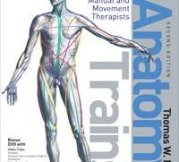Understanding Anatomical Relationships is Key to Understanding Movement