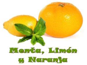 Zumo de menta, limón y naranja