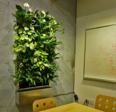 This room was 'planted'.