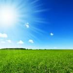 Shining Some Light on Solar Energy