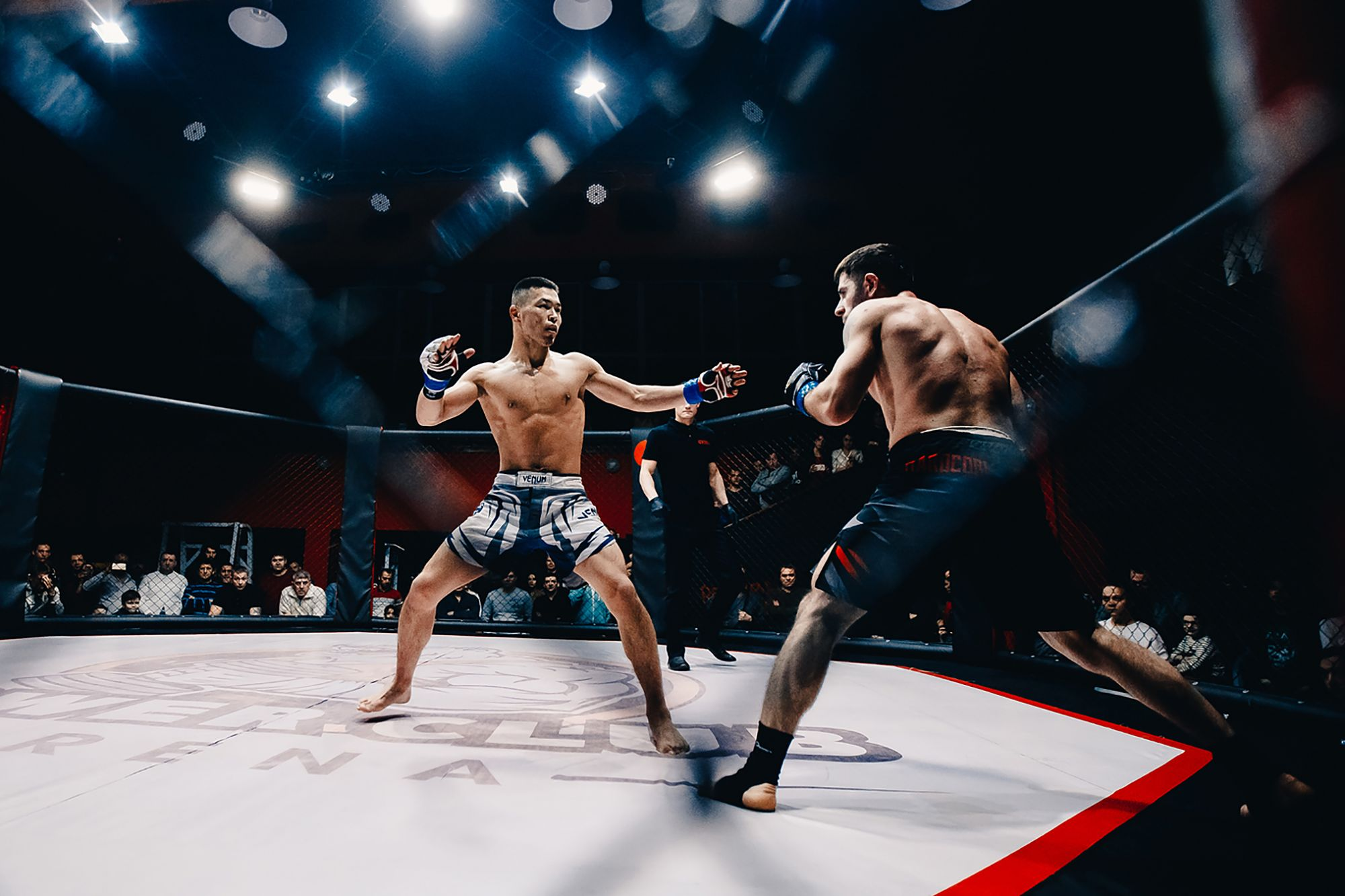 How CBD Entered The World Of Mixed Martial Arts
