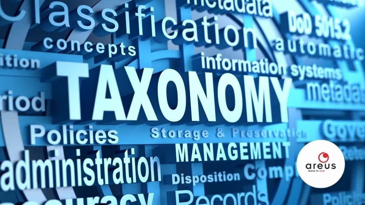 Taxonómiához kapcsolódó szavak grafikusan megjelenítve