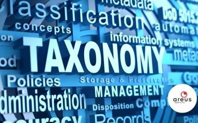 Taxonómia szerepe a törzsadatkezelésben