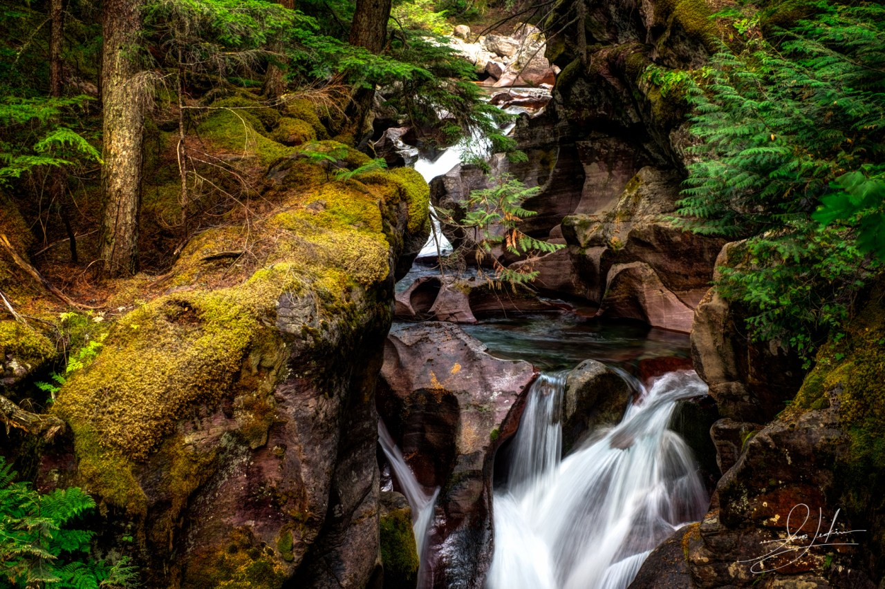 Avalanche Gorge In Glacier National Park