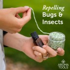 Repelling Bugs & Insects