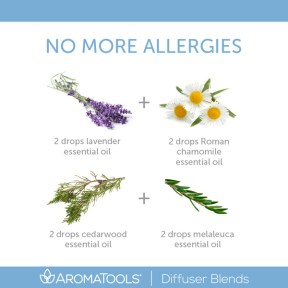 No More Allergies