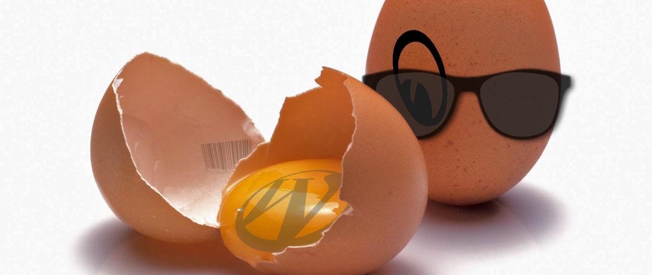 WordPress Author Link