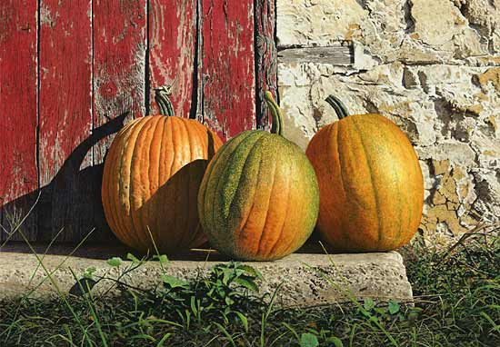 Ripening Pumpkins, giclee print of an original watercolor painting by Steven Kozar