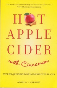 Hot Apple Cider with Cinnamon - cover