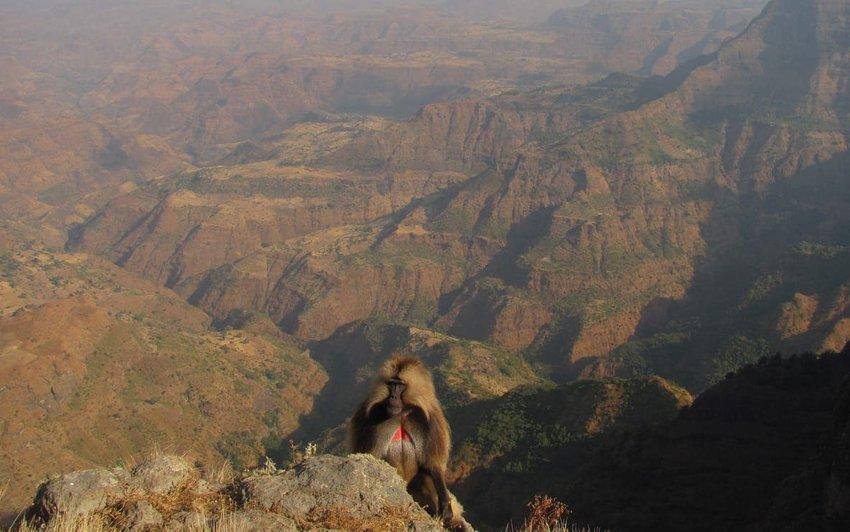 Simien Mountains – Ethiopia