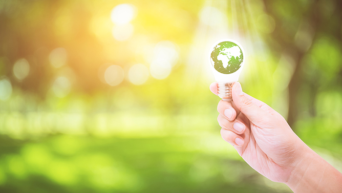 Green lighting: Celebrating carbon-neutral success
