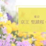 京王 聖蹟桜ヶ丘 期間限定ショップのお知らせ