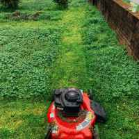 Where To Find Lawn Mower For Sale In Singapore?
