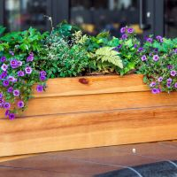 A Comprehensive Guide to Choosing the Best Planter Box