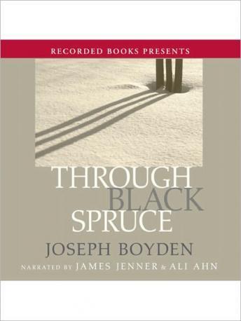 Through Black Spruce.
