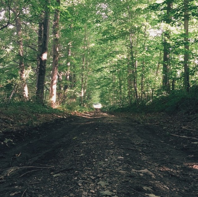 A trail road in Vermont