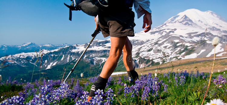 9 nature hacks for hiking comfort, picture of a guy hiking up a mountain with purple flowers in the foreground and a mountain in the background