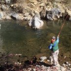 Adventures at AvidMax: Learning to Fish Without Snoopy, Part 1