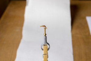 Using a fill card to photograph your flies