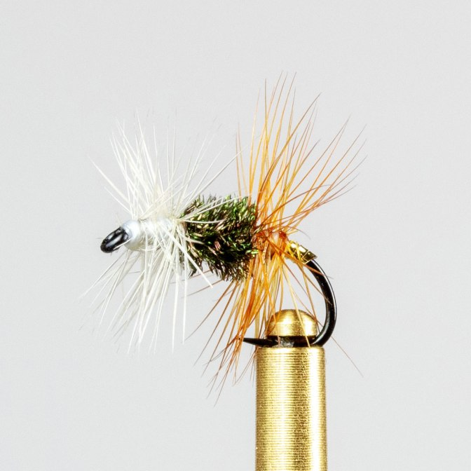 Learn how to the Renegade fly with video instructions.