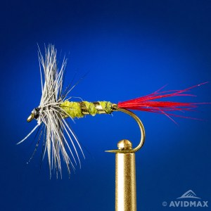 Grey Hackle Yellow fly tying video and tutorial