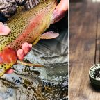 College Budget + Fly Fishing Trout Addiction = Redington Zero and Classic Trout