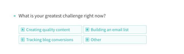 Typeform survey. What's your greatest challenge?