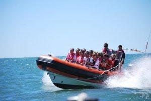 Speed boat à Lisbonne - Activité insolite à Lisbonne