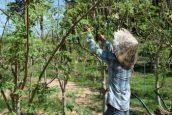 Moringa-Land-Baca-Villa-05-2015-19