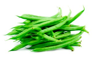 Effects of Moringa on Growth Yield Snap Beans.