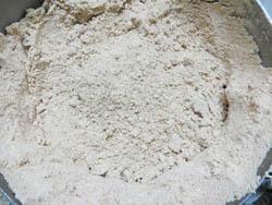 Moringa-seeds-powder