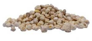 organic-moringa-peeled-seeds